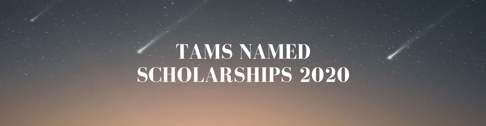 2020 TAMS Named Scholarship Recipients